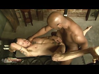 Jack kash barebacks damon dogg