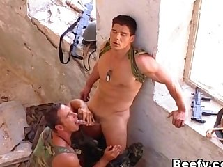 Military in war suck and fuck each other